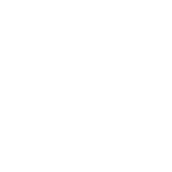 Concept Multi Services
